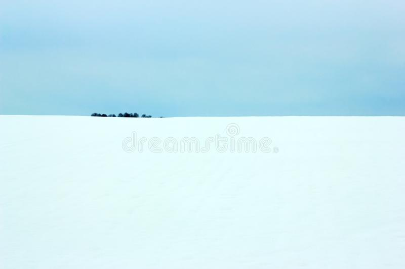 Winter plain landscape. Beautiful winter plain landscape, flat land with a small tree wood island on the horizon. Empty space for your design royalty free stock images