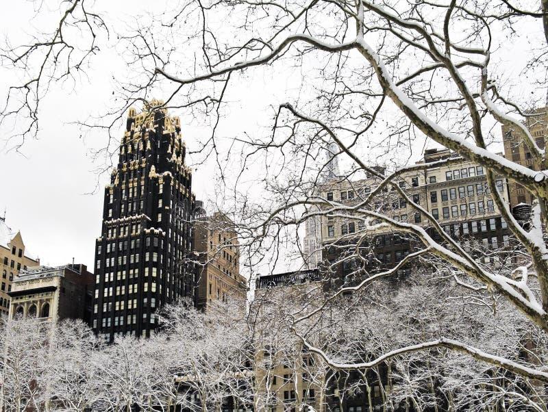 Winter-Platane Bryant Park stockbild