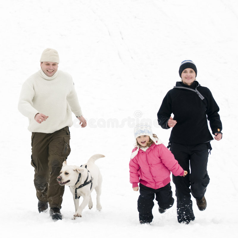Winter playing with dog royalty free stock photo