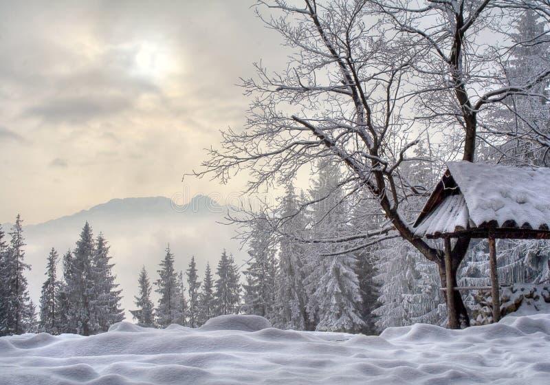 Winter in Polen lizenzfreie stockfotografie