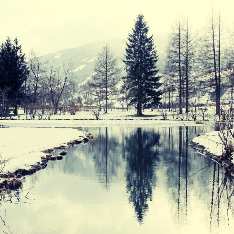 Winter pond royalty free stock image