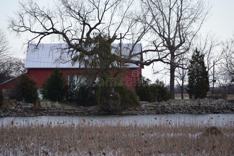 Winter& x27 ; portée de s photos libres de droits