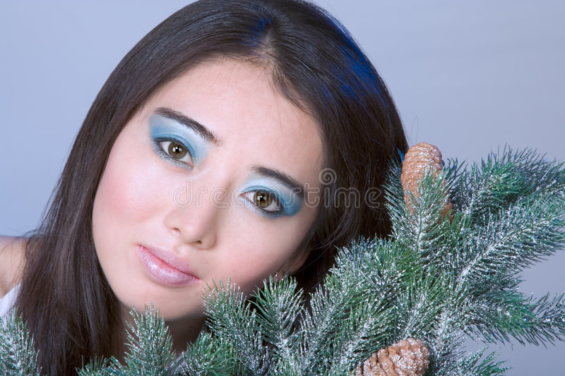 Winter portrait #1 royalty free stock images