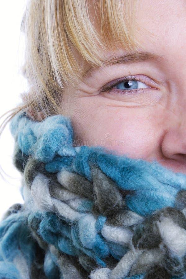 Winter-Portrait stockfotos