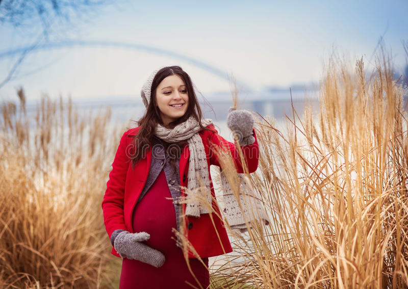 Winter portrait of beautiful pregnant woman stock photo