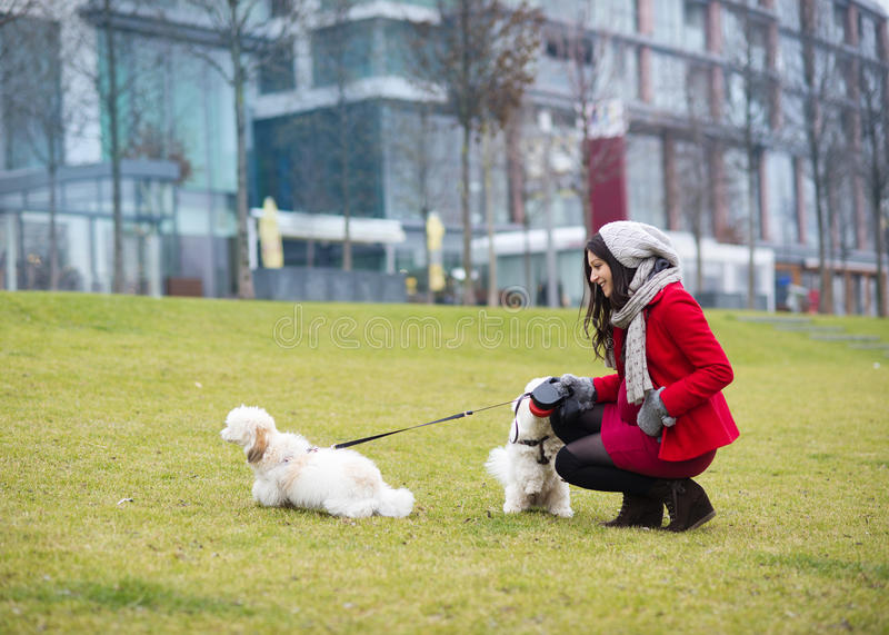 Winter portrait of pregnant woman walking dogs royalty free stock images