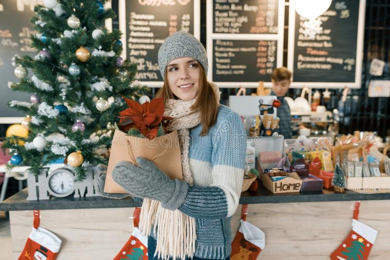 Winter portrait of young beautiful woman in knitted scarf, knitted hat, mittens, warm sweater with Christmas red poinsettia flower stock photo