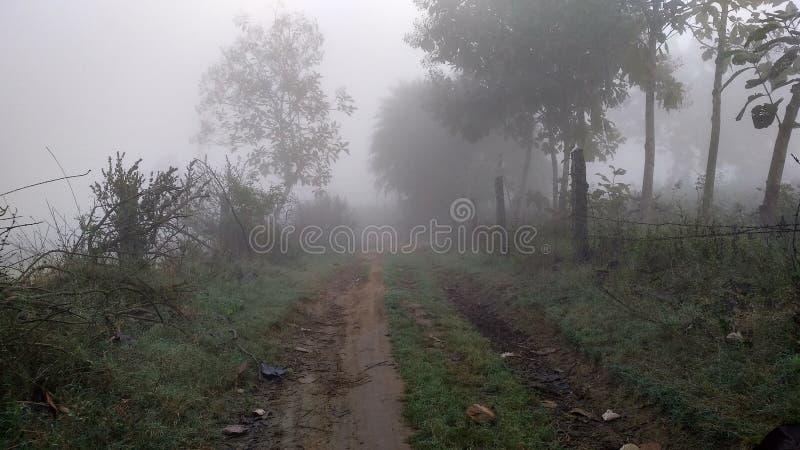 Winter-Rauchzaun des kühlen einfachen Hintergrundwinters der Natur kühler undeutlicher stockfoto