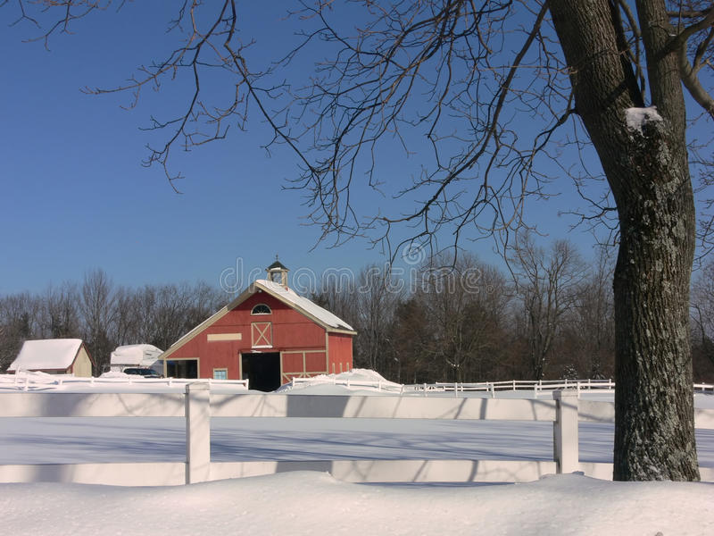 Winter: red barn with tree in snow royalty free stock photo