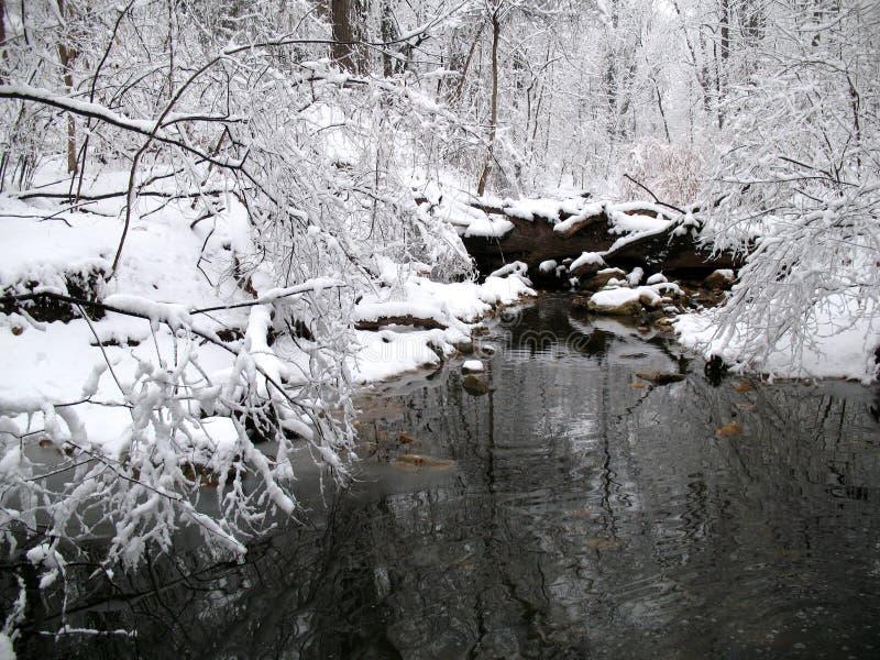 Download Winter Reflections stock image. Image of creek, seasonal - 2006925