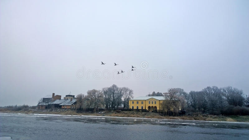 Winter river. Overcast sky. On the banks of the river ice. Winter graphics. Cold River reverie. Flying swans on a . Time for winter fishing stock photo