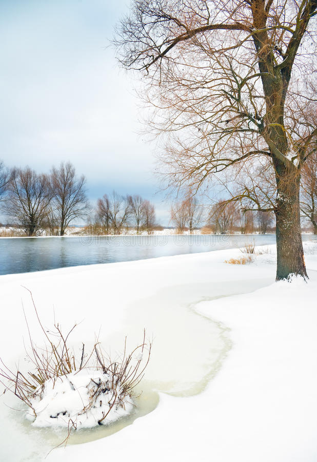 Download Winter river and trees stock photo. Image of panorama - 29002790