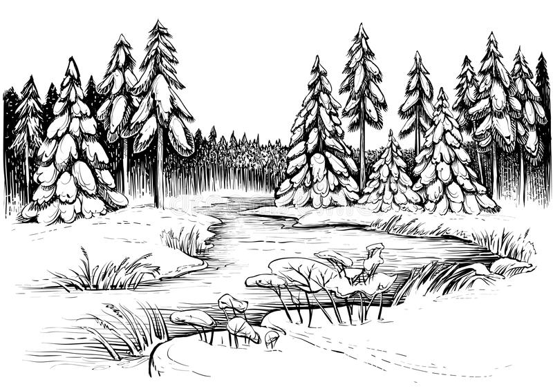 Winter river under ice and forest of snowy firs and pines. Vector drawing. Winter river under ice and forest, landscape sketch. Black and white vector royalty free illustration