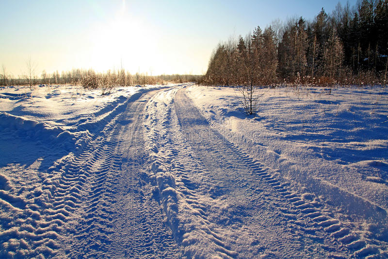 Winter road. Against bright sun stock photography
