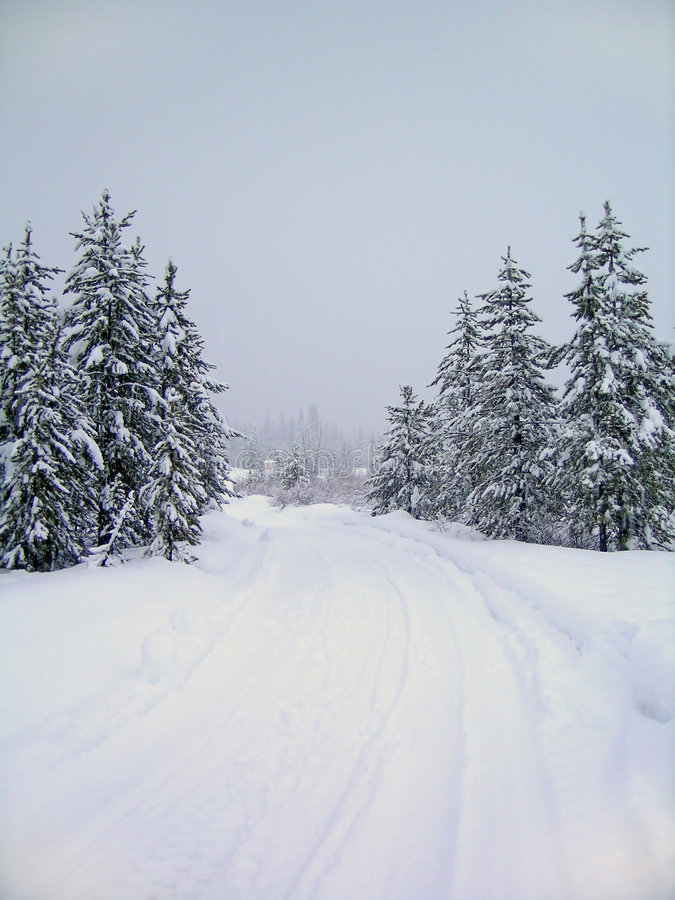 Free Winter Road Stock Images - 1459304