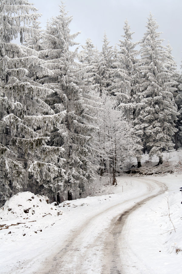 Free Winter Road Stock Images - 3980634