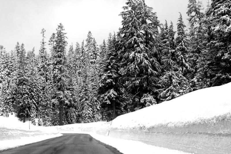 Winter_Road stockfotos