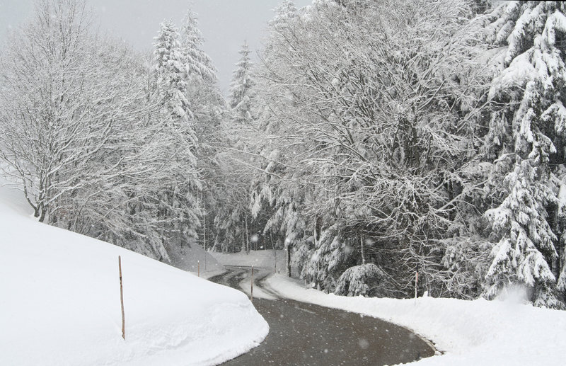 Download Winter road stock image. Image of path, turn, firs, view - 7251529