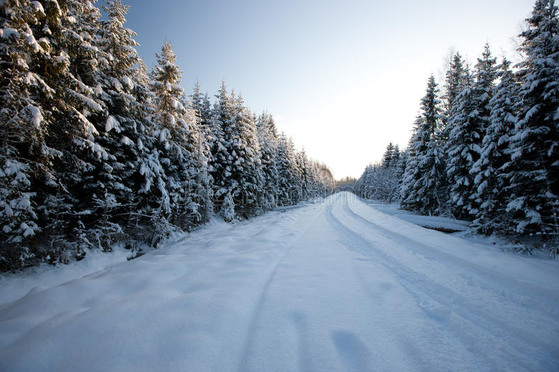 Download Winter Road Stock Photography - Image: 29705562