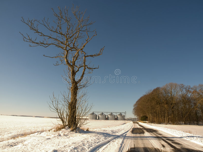 Download Winter road and farm stock photo. Image of windblown, country - 8216792