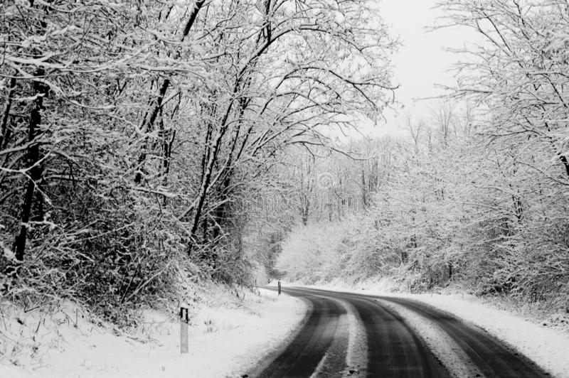 Winter road with snow on the ground. travel in difficult way to enjoy the colder season. white image with black asphalt in. Contrast. drive and travel concept stock photography