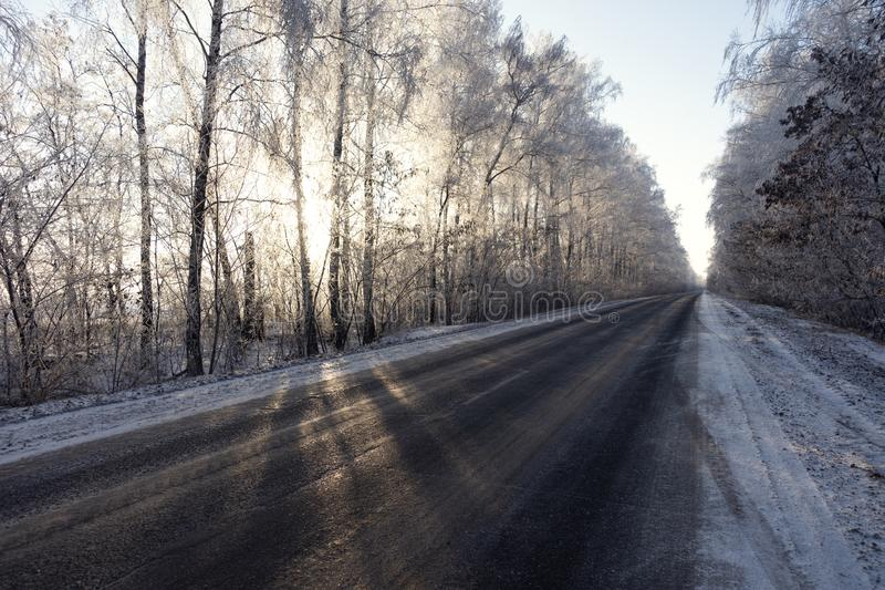 Winter road and snow with landscape of trees with frost.  royalty free stock image