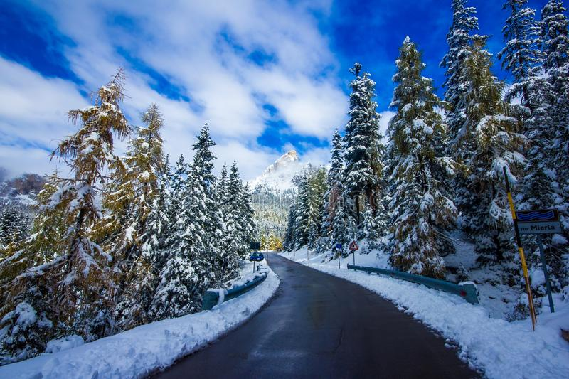 Winter road and trees with snow and alps landscape, Dolomity, It. Winter road and trees with snow and alps landscape in Dolomity, Italy royalty free stock images