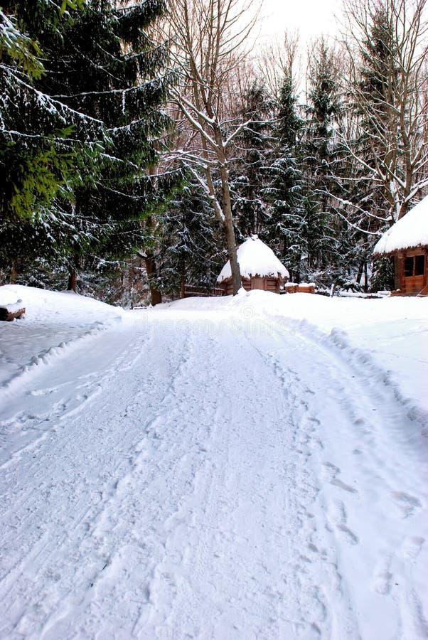 Winter roand im Wald lizenzfreies stockfoto