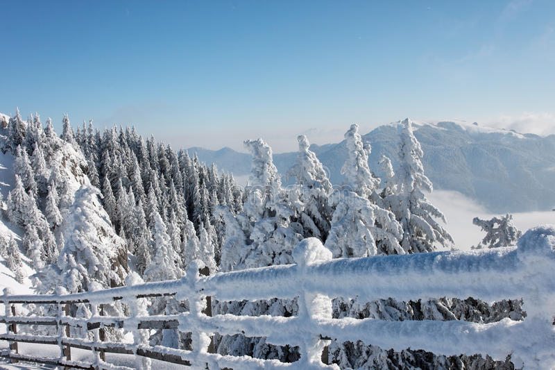 Winter in Romanian mountain stock image