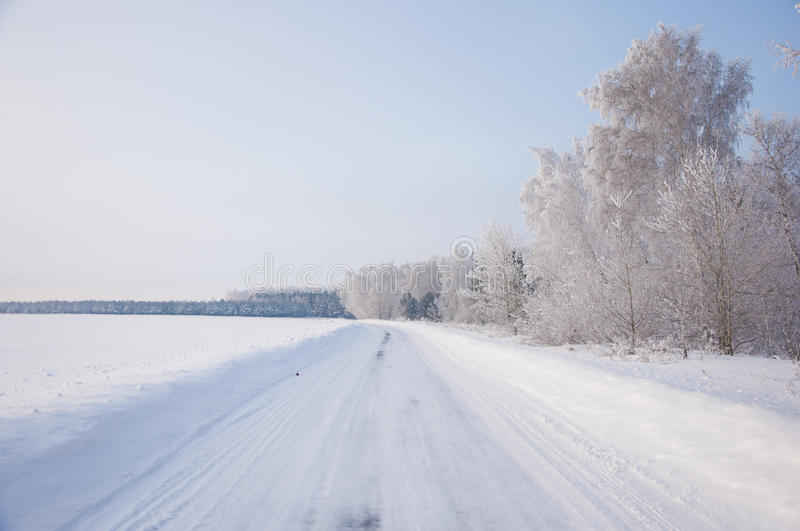 Winter russian forest snow road. Winter country road with forest on the side royalty free stock photography