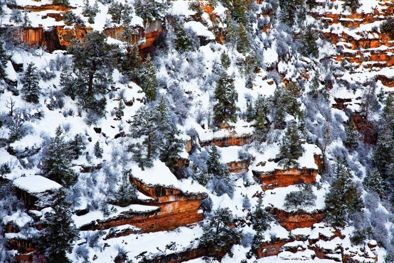Winter, Südkante, Nationalpark Grand Canyon s, Arizona stockbilder