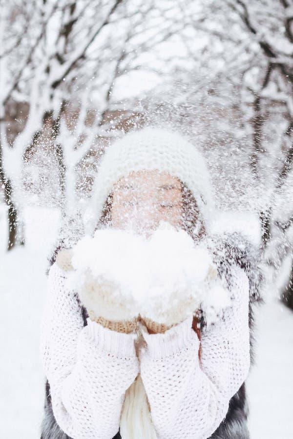 Winter& x27; s-Geschichte stockfotos