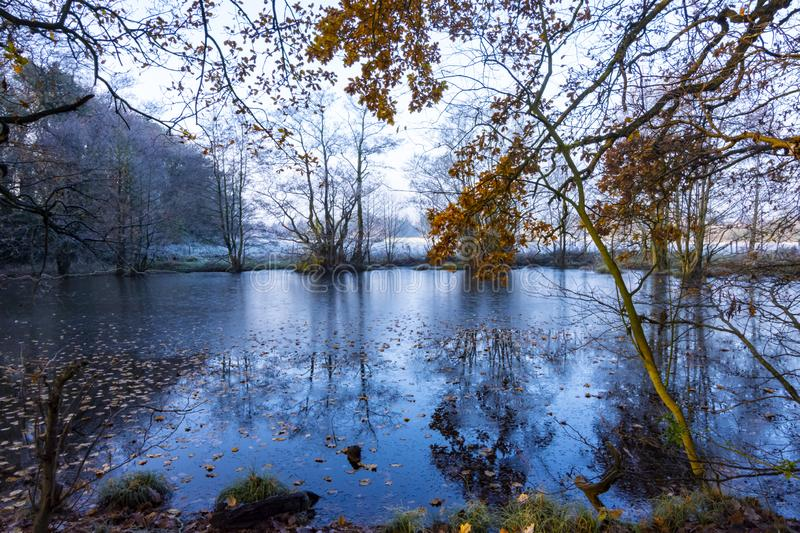 A Winter`s Morning Pool With Stark Trees In Cheshire Countryside stock images