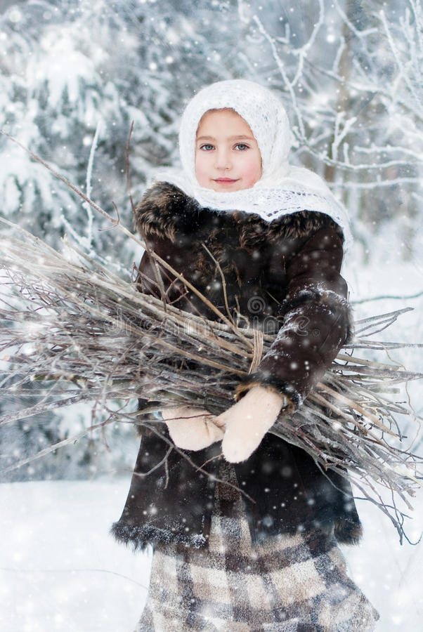 Free Winter S Tale Royalty Free Stock Images - 35838089