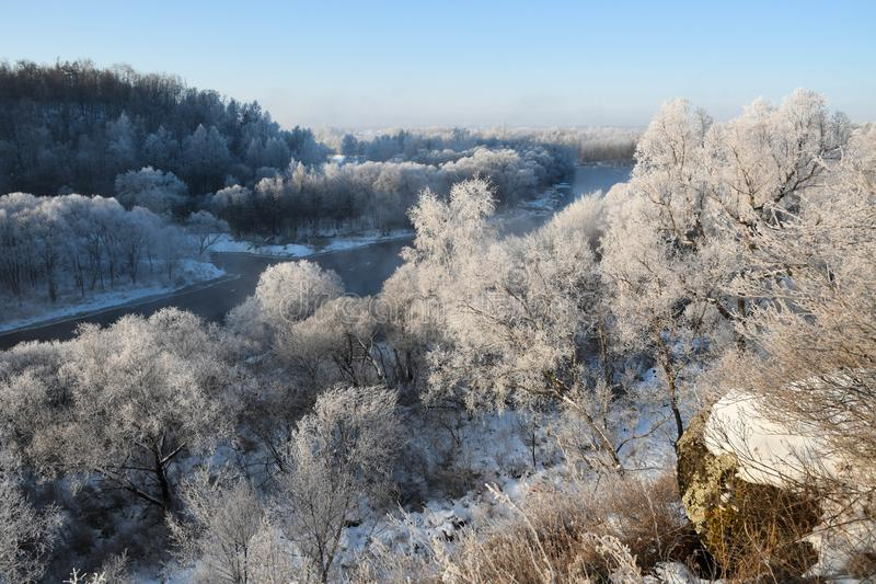 Winter`s Tale in northeast  China. Rime on trees on both sides of the river, mist in the morning, like a white winter's tale. winter tree. winter forest royalty free stock image