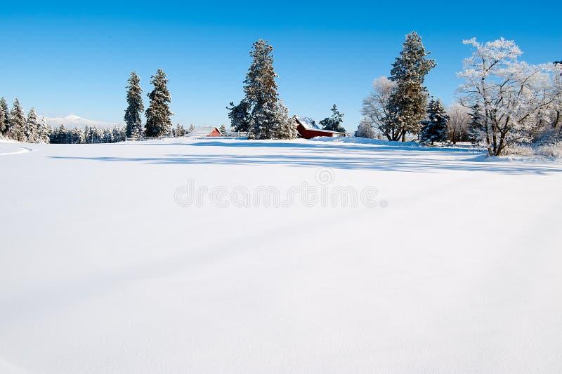 Winter scape stockbilder