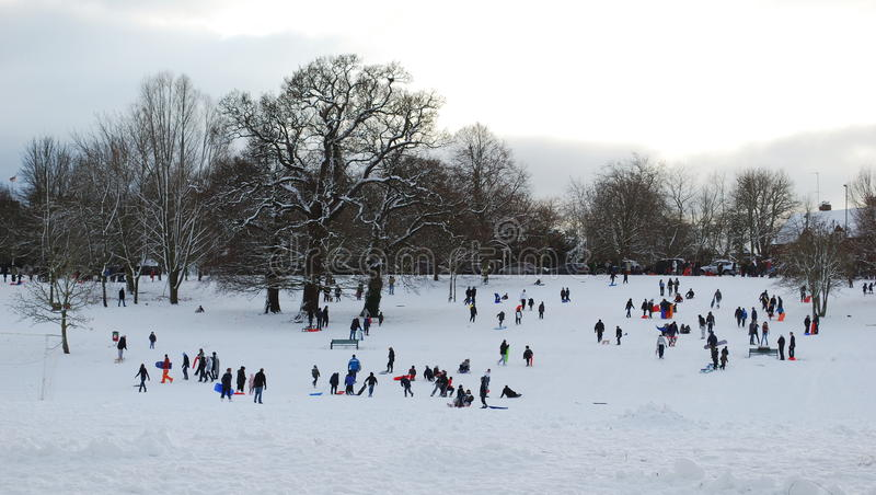 Download Winter scene stock photo. Image of snow, enjoying, winter - 12522096