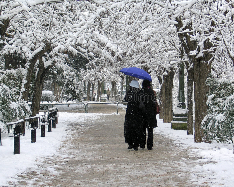 Download Winter scene stock image. Image of xmas, motion, cold, stroll - 404225