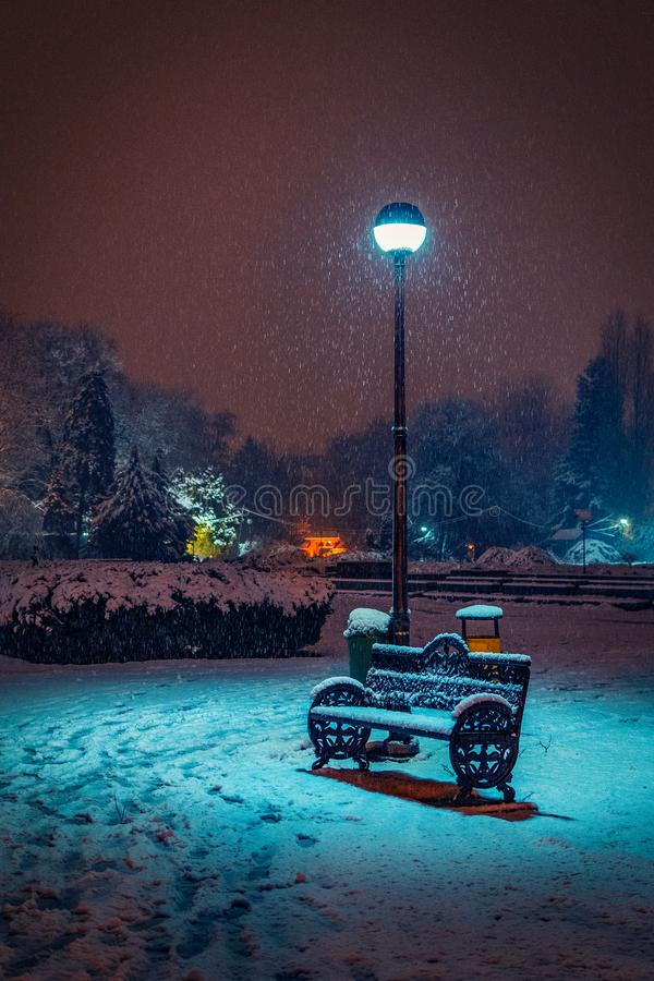 Winter scene with a bench in the park in the night covered in sn royalty free stock photo