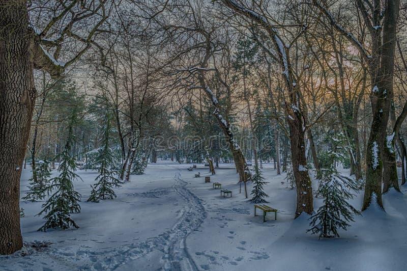 Winter sunset scene city park Yambol royalty free stock photography
