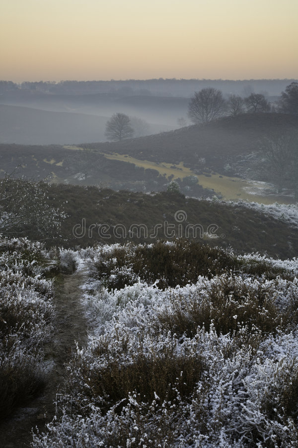 Download Winter scene over moor stock photo. Image of outdoors - 3991186