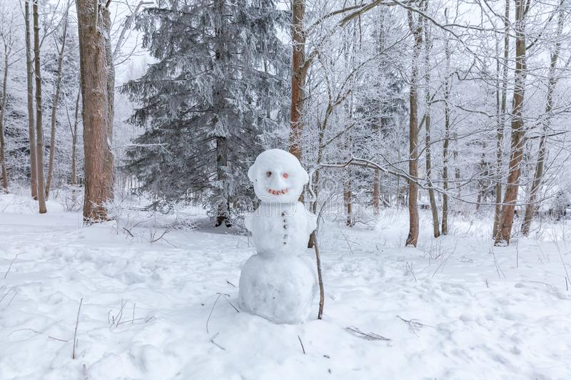 Winter scene in a rest zone near a forest. Benches and snowmen, forest road. Winter scene in snowy park in a rest zone near a forest. Benches and snowmen, forest royalty free stock image