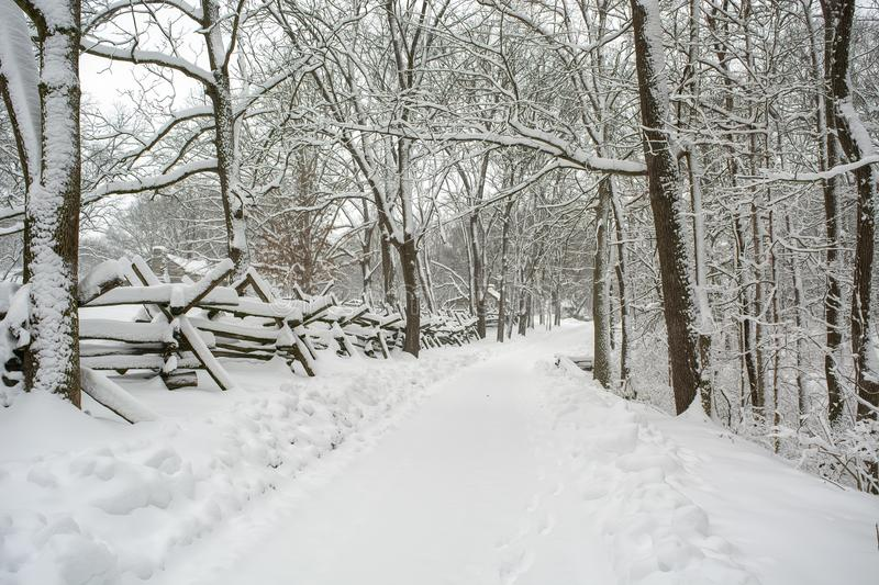 A winter snowy road less traveled royalty free stock photography
