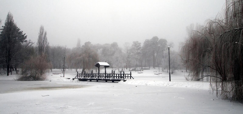 Download Winter stock photo. Image of season, winter, white, tree - 36670656