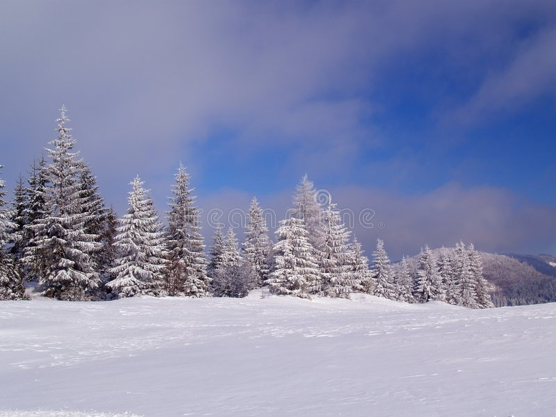 Download Winter scenery stock image. Image of peaceful, clouds - 3993719