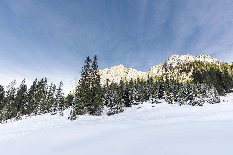 Winter landscape with snowy alps and forest. Winter scenery in the Austrian Alps with clean white snow and snowy forest. Snow-covered trees and rocky mountains royalty free stock photos