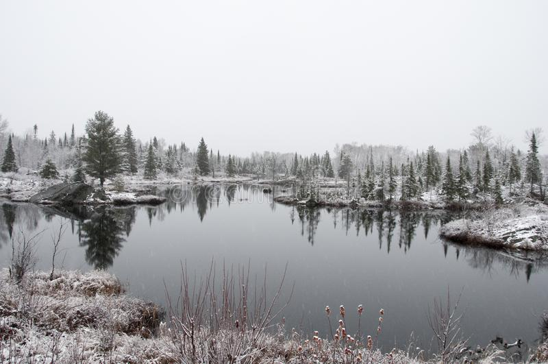 Scenery winter season stock photos.  Winter landscape snow covered of trees, foliage, gray sky, water pond. Winter scenery with frost trees with snow cover by stock photo