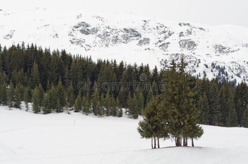 Download Winter Scenery, Haute Savoie, France Stock Photo - Image: 22149700