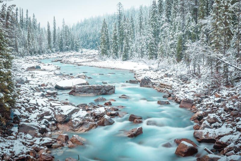 Winter scenes from Yoho National Park, Canada stock photo