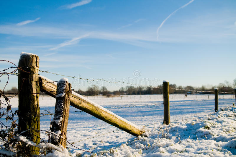 Winter Scenic stock photo